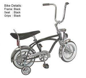 All Chrome Low Rider Bike